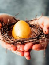 Unscrambling the nest egg